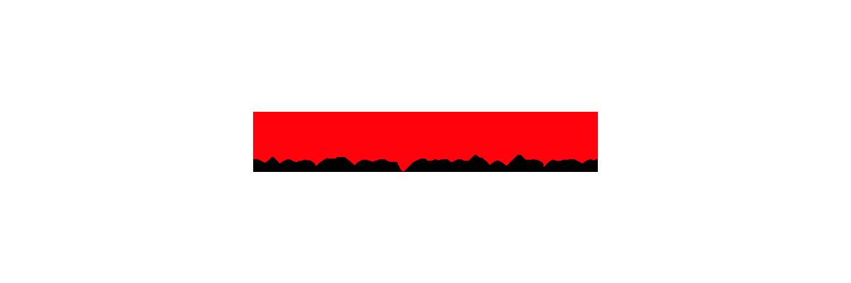 rockwool logo-1